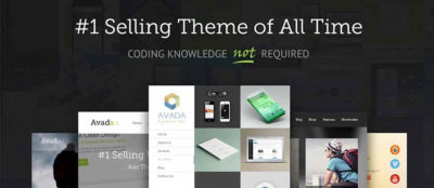 Developer Insights – Introducing the Avada Theme